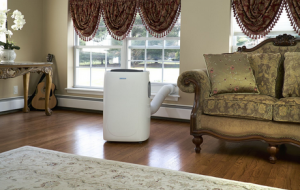 Best Portable Air Conditioner Reviews