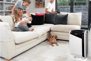 Best Air Purifiers For Mold & Dust Reviews