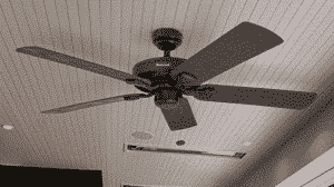 Best Outdoor Ceiling Fans Reviews