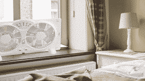 Best Window Fans Reviews